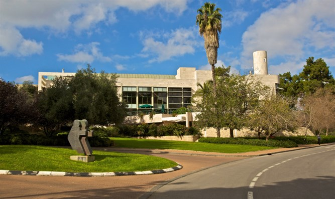 The Weizmann Institute