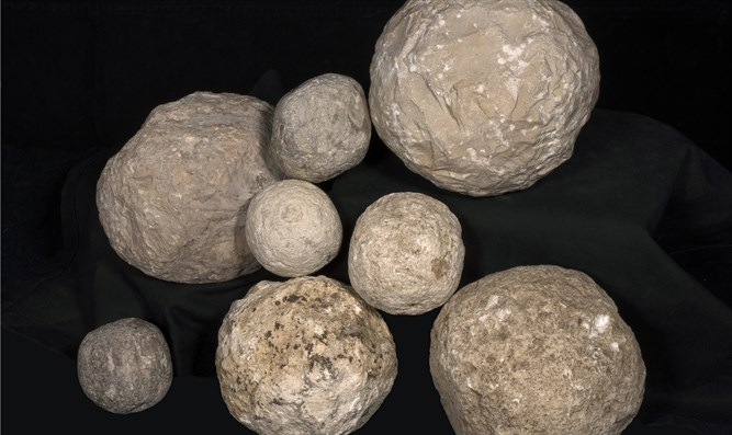Stone ballista balls found in the dig