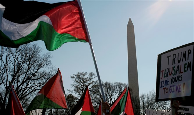 Anti-Israel protest in Washington (archive image)